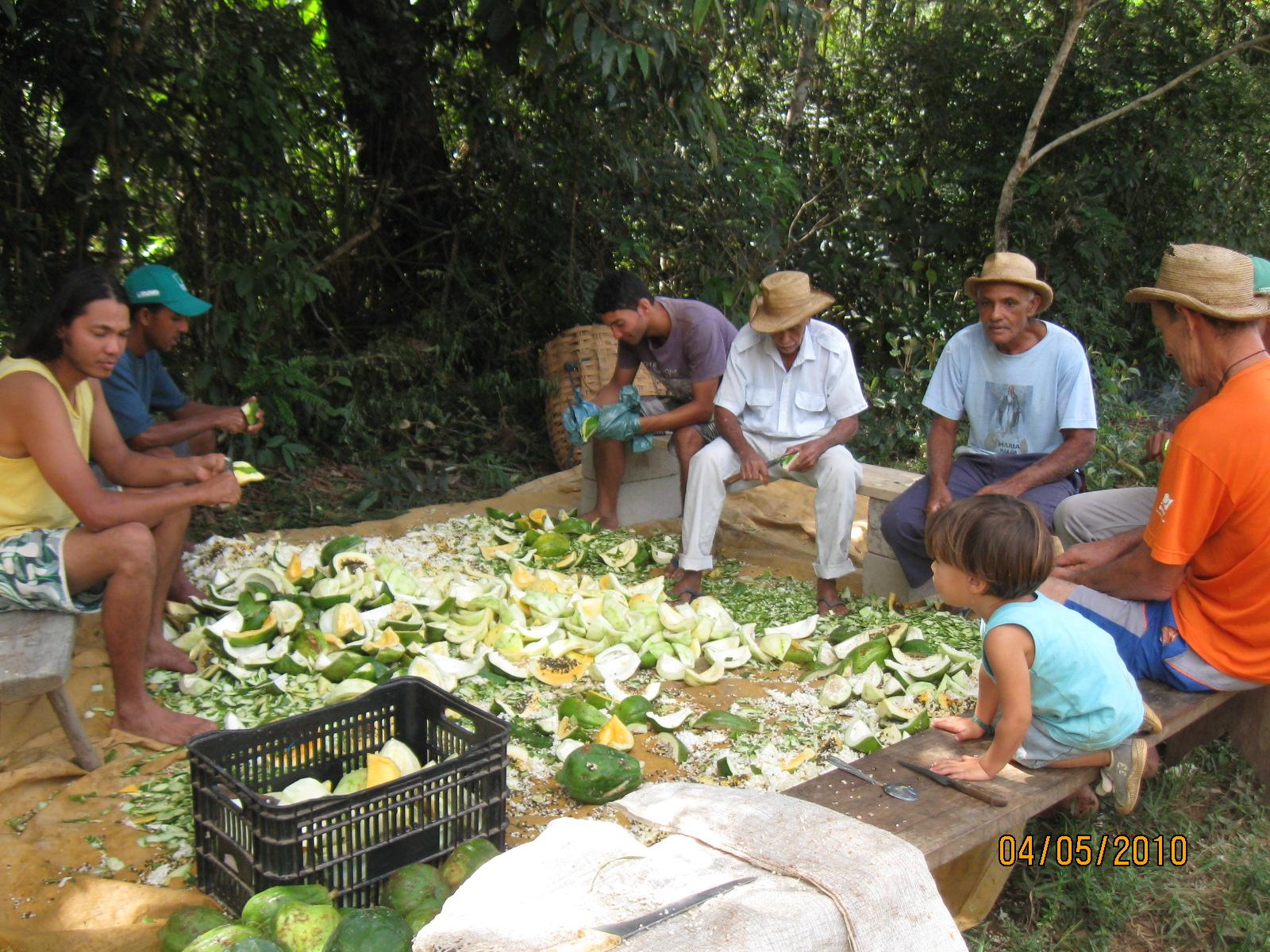 Festa da Lapinha. Foto: Amalapinha