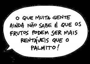 balao-pg8
